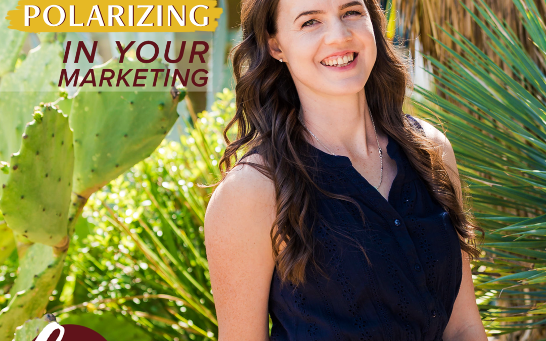 97- Be Polarizing In Your Marketing
